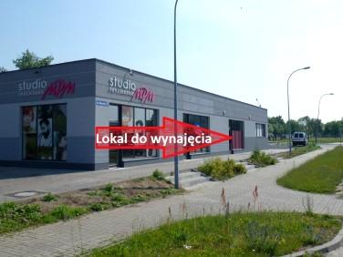 Lokal Legnica wynajem