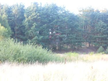 Działka budowlana chojno-wieś