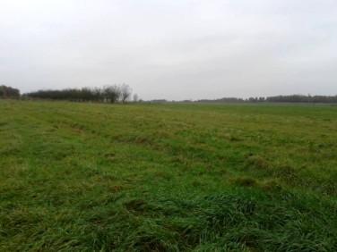 Działka rolna Zator