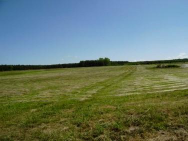 Działka rolna Rokitnica