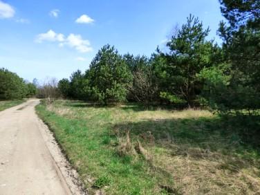Działka budowlano-rolna Borowa