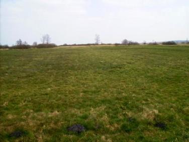Działka rolna Orłowo