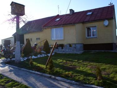 Dom Krzewsk