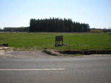 Działka siedliskowa Dąbrowa Biskupia