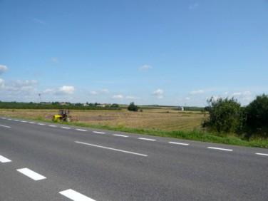 Działka Sandomierz