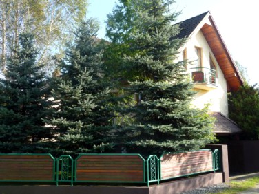 Dom Pszczyna