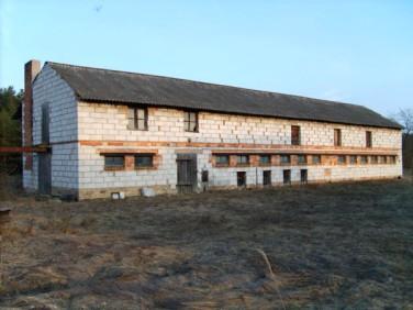 Budynek użytkowy Stany