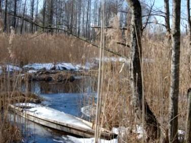 Działka siedliskowa Dubowo