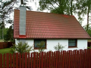 Dom Czarnogłowy