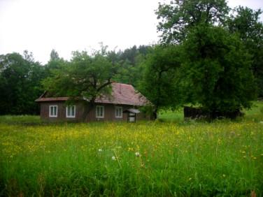 Dom Stańkowa