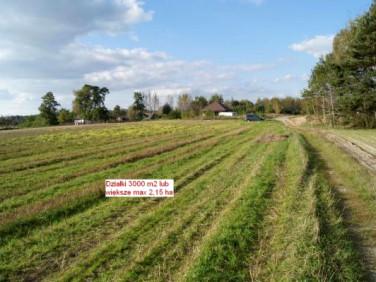 Działka siedliskowa Sarbiewo