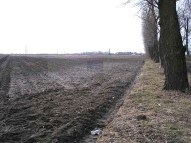 Działka rolna Ożarów Mazowiecki