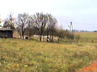 Działka Książnik