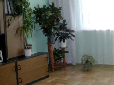 Mieszkanie Dobrocin