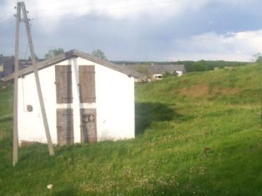 Dom Witowo