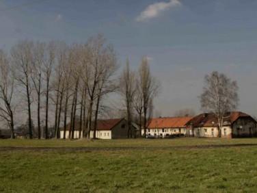 Działka Mikołów