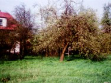 Działka Kraków
