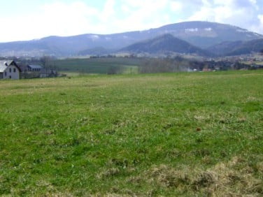 Działka Kalna