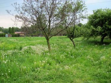 Działka rolna Oświęcim