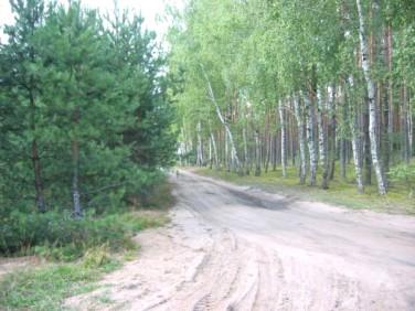 Działka rekreacyjna Osowo Leśne