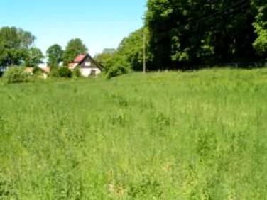 Działka Frombork