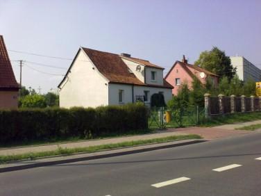 Dom Wilkasy
