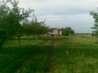 Działka Jedlińsk