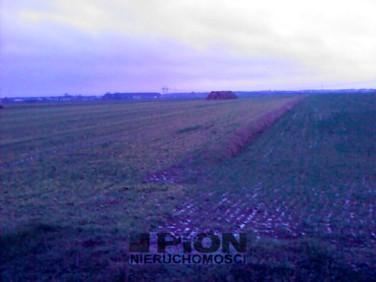 Działka rolna batorowo