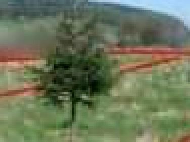 Działka moszczenica niżna
