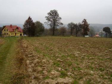 Działka rolna Reczpol