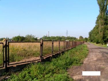 Działka rekreacyjna Sosnowiec