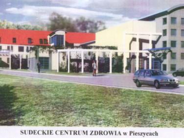 Budynek użytkowy Pieszyce