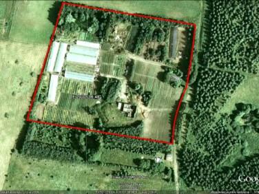 Działka budowlano-rolna Żabi Róg