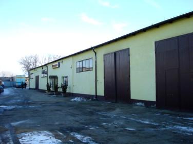 Budynek użytkowy Sępólno Krajeńskie