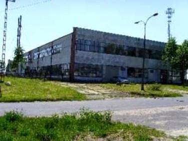 Lokal użytkowy Burzenin