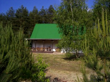 Dom Petrykozy