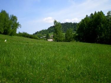 Działka rolna Lachowice