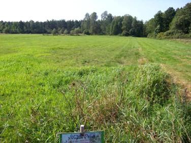 Działka rolna Gutkowo