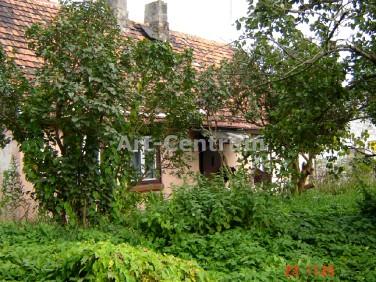 Dom Nieszawa
