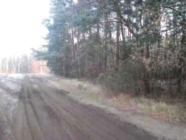 Działka leśna Pęclin