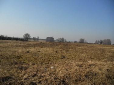 Działka siedliskowa Smolęcin