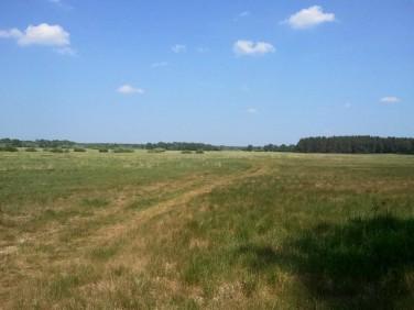 Działka Komarowo