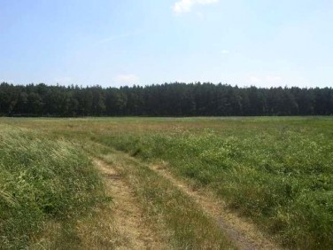 Działka rolna Komarowo
