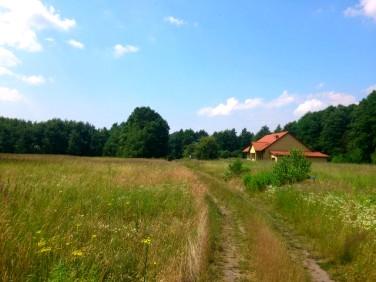 Działka rolna Grzepnica