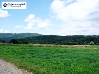 Działka budowlano-rolna Łodygowice
