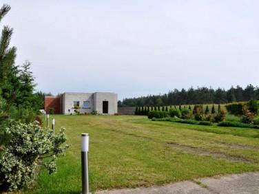 Dom Zalesie