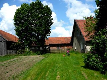 Dom Pisanica