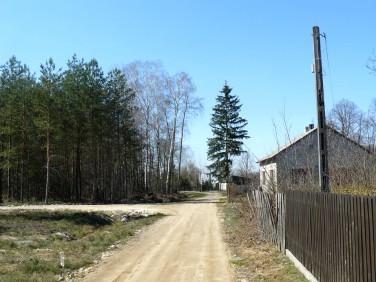 Działka leśna Kąty Goździejewskie Pierwsze
