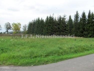 Działka budowlana Warszowice