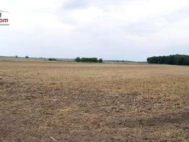 Działka budowlano-rolna Rewal